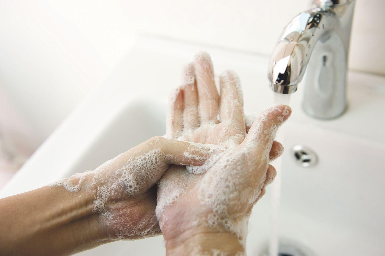 Magen Darm Grippe Der Norovirus Als Ungebetener Gast